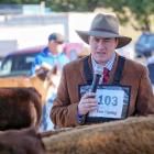 Sam Tipping is gaining experience judging both cattle and sheep. Photos: Supplied