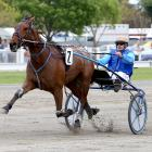 Champion trotter Monbet's comeback campaign to make it back to the races has take a major blow....