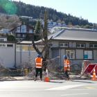Contractors cut down two trees in Queenstown's CBD to make way for a new bus station. PHOTO:...