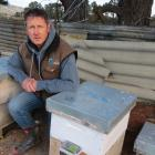 Ettrick apiarist Russell Marsh has installed high-tech monitoring equipment in six of his hives...