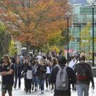 International education contributes more than $5 billion to the NZ economy and is the country's...