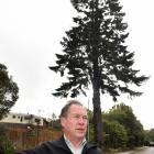 Wakari resident Tony Montgomerie is opposed to the felling of the tree behind him on Ferntree Dr....