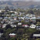 Houses in Dalmore, Dunedin. Photo: Peter McIntosh