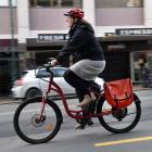 Whizzing along George St is Dunedin City Council staffer Stacey Hitchcock on the council's work e...