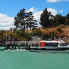 Black Cat Cruises is looking at buying a battery-electric vessel for trips across Lyttelton...