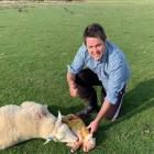 Clutha-Southland MP Hamish Walker with the newborn lamb and its mother in a paddock near Garston....