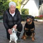 Dianne Pearsey with her dogs KC (left) and Jewelz . Photo: Abbey Palmer