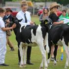 All Breeds Dairy Handler competitors Ashley Wendelgelst and Chloe Thomson chat during the calf...