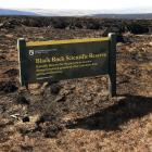The Black Rock Scientific Reserve was devastated by the fire near Middlemarch. Photo: Stephen...