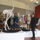 IMG 4537:  Guest Artist Michele Beevors from Dunedin( Right front), beside her display of hand...
