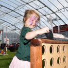 Macy Harmes (4), of Dunedin, plays Connect 4 at the Home and Living Show at Forsyth Barr Stadium...