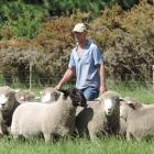 The Ross family, from Hakataramea, has been breeding stud sheep for more than six decades. Eric...