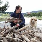 Stella Nepia, of Wanaka, and dog Ruby take some sticks away from the swathe of driftwood along...