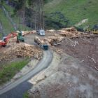A logging ''factory'' in full swing at Ferny Hill. PHOTOS: BRENT MELVILLE