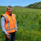 City Forests chief executive officer Grant Dodson in front of a year-old radiata pine plantation...