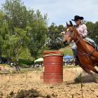 Spectators relax under trees as Middlemarch cowgirl Elaine Grubb competes in the open barrel race...