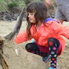 Zoe Brinkworth (7), of Tussock Creek, puts the final touches to her family-made unicorn sand...