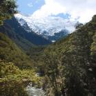 The Rob Roy Glacier, as seen from the lower lookout on the Rob Roy track. PHOTO: ODT FILES