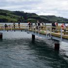 Fishers try their luck at the Boiler Point fishing jetty in Careys Bay on Sunday. PHOTO: SHAWN...