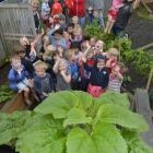 Taking out the regional top spot for tallest sunflower was Mosgiel Central Kindergarten. PHOTO:...