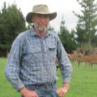 Rothesay Deer owner Donald Greig breeds English and composite deer for the trophy, venison and...