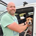 Dunedin SAR co-ordinator Nathan White comforts a dog rescued from cliffs in Dunedin. Photo: Linda...