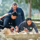 Students Redginald Reihana and Mihiora Waipouri drenching under the guidence of tutor Allan Roxbuugh
