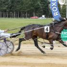 Enchantee scores a front-running win in the Roxburgh Cup for driver Blair Orange on Saturday....
