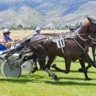 Andy Hall (outer) runs past Helluva Way, Christmas Babe and Matai Jester to win at Cromwell...