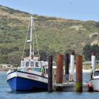 Monarch and Vivienne J float moored to the Wellers Rock pontoon, where the  two black piles  were...