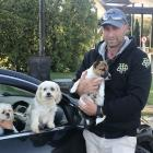 Veronica and Corey Woodrow and their dogs Pocket, Pixie and Mocha were evacuated from their...