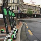 Lime e-scooters have been operating in Dunedin since last year. Photo: James Hall