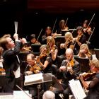 RNZ Concert is uniquely positioned to lead a more representative arts experience. Photo: Patrycja...
