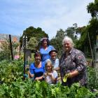 At work in Taieri Community Garden are (from left) volunteer Nikki Miller, of Wingatui, co-co...