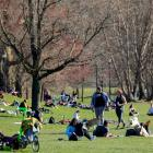 People gather in Prospect Park in Brooklyn, New York. Photo: Reuters