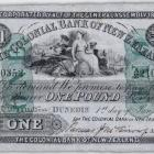 This rare Colonial Bank of New Zealand £1 note from 1887 has Dunedin links and will go up for...