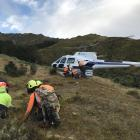 Wilding tree removal contractors are dropped off for a day's work near Eichardt's Flat, Arrowtown...