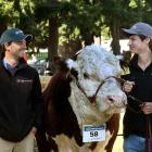 World Hereford Conference visitors Fernando (with a Rural Livestock cap on) and Guzman Alfonso,...