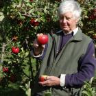 John McLaren holds a rare apple with a historical past. PHOTO: MARK PRICE