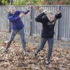 Playing in the leaves on Paparoa St, Papanui.