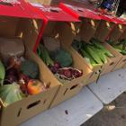 Fresh produce: Fruit and vegetables set to go out. Photos: Cam Booker