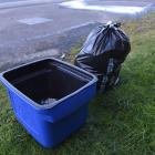Plastic rubbish bags may be replaced and existing wheelie and recycling bins joined by up to two...