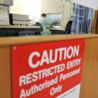 A University of Otago researcher continues study during the Covid-19 lockdown recently. PHOTO:...