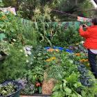 Festival director Sandi MacRae checks out the progress made at a school garden. Photo: Supplied