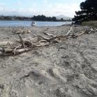 A Karitane driftwood fence used as a sand trap for the spit at the end of Waikouaiti Beach and...