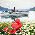 The TSS Earnslaw cruise, pictured in front of Walter Peak High Country Farm, is one of Real...