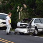 The crash happened near the intersection with Tunnel Beach Rd and Green Island Bush Rd. Photo:...