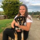 Living the life ...Teagan Graham enjoyed being on a sheep and beef farm during the Covid-19...