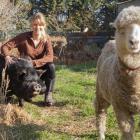 Siana Fitzjohn with her KuneKune pig Splodge and sheep Little Hope. Photo: Geoff Sloan
