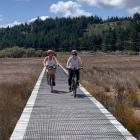 Cycling through mangroves on the longest boardwalk in New Zealand between  Okaihau-Horeke.